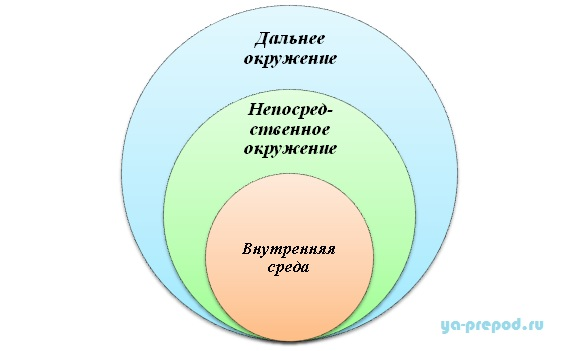 Пирог организационной седы