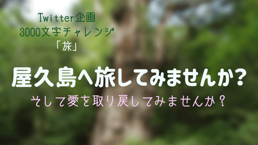 【3000文字チャレンジ】屋久島へ旅してみませんか?そして愛を取り戻してみませんか?