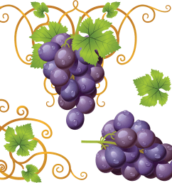 grape clipart sona png image free picture [ 3529 x 3057 Pixel ]