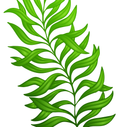 plant clipart green plant exotic png image gallery clip art black and white [ 3898 x 5957 Pixel ]