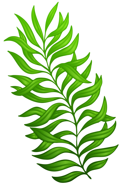 small resolution of plant clipart green plant exotic png image gallery clip art black and white