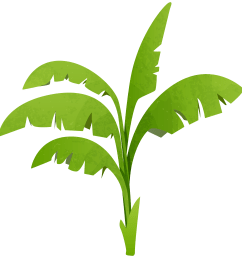 plant clipart green plant graphic free download [ 5814 x 6000 Pixel ]