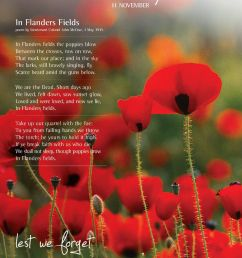 poppy clipart flanders field rememberance day remembrance cassiefairy image freeuse download [ 1153 x 1494 Pixel ]