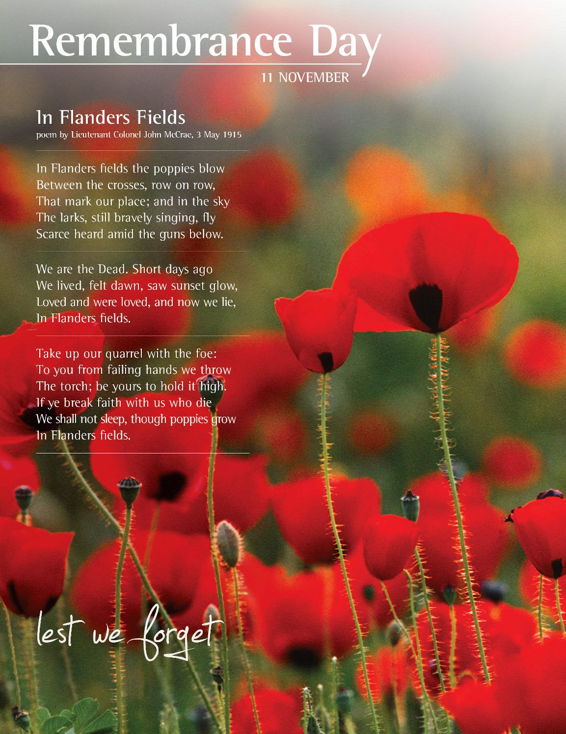 hight resolution of poppy clipart flanders field rememberance day remembrance cassiefairy image freeuse download