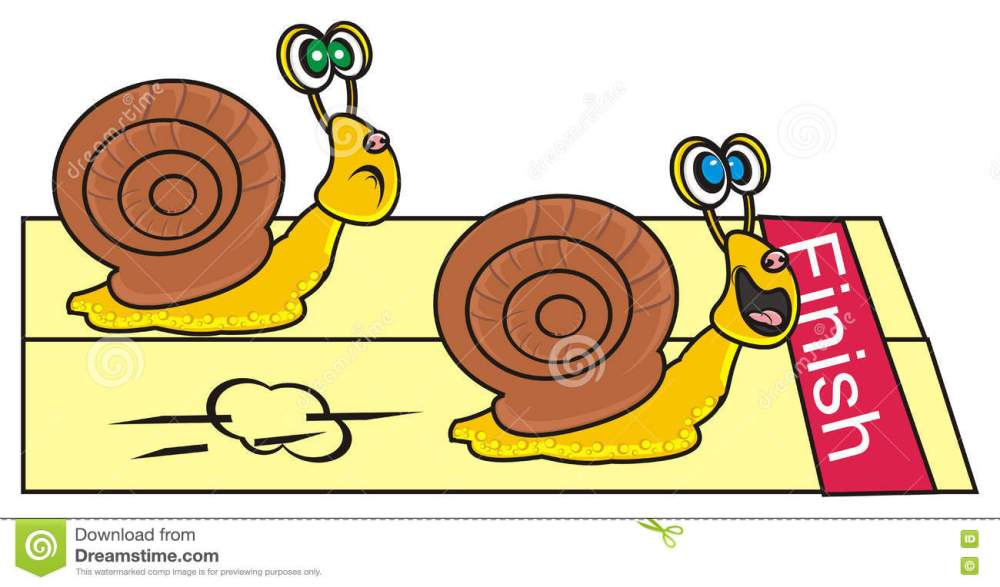medium resolution of of two snails stock snail clipart snail race png transparent library