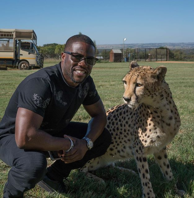 kevin hart south africa 5