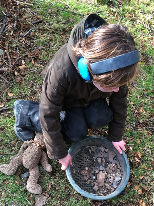 Sieving for gold, but finding small animal bones