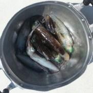 Bucket 'o squid