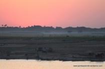 Sunset on riverbank ...