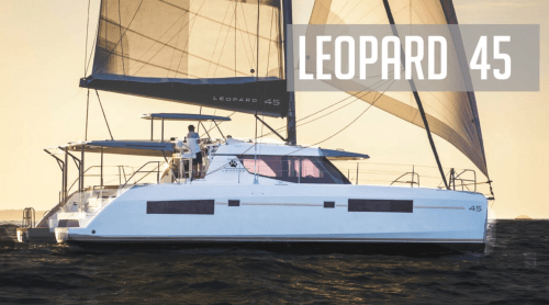 small resolution of leopard 45 a comprehensive review