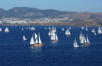 Sailing gulet regatta Bodrum Cup Turkey