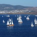 Sailing gulet regatta Bodrum Cup Turkey