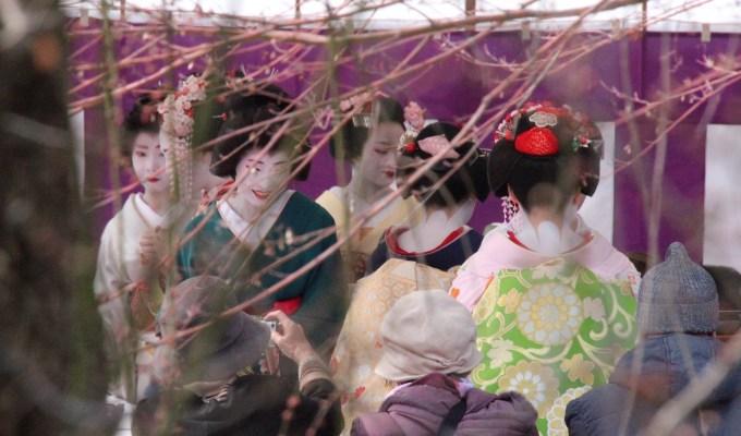 The ume blossom festival