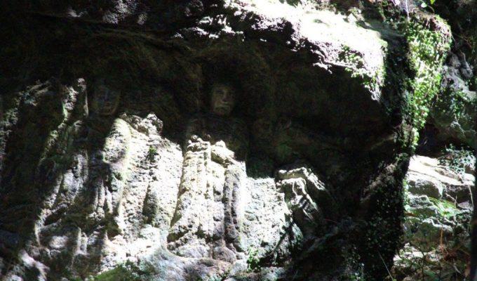 [通年]奈良 春日原始林 滝坂の道