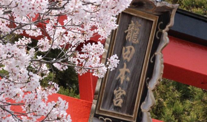 [4月4日]奈良 龍田大社 風神祭(例大祭)