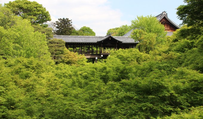 [May] Traditional Event in Kyoto and Nara