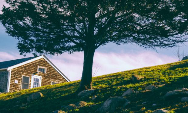 【特集コラム】第4回:日本でだって手に入る、夏の家(サマーハウス)の様々なカタチ 豊かさってなんだろう?北欧から学ぶ暮らし方