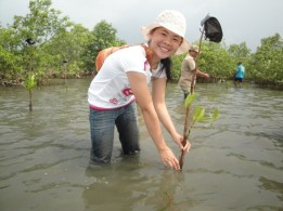 The involvement of youth in fishery resource conservation through re-planting mangrove trees.