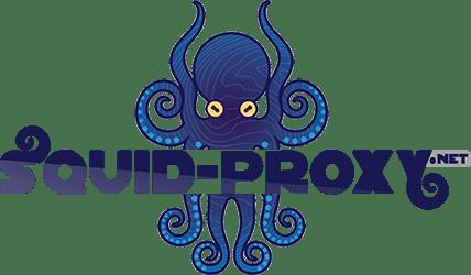 Squid Proxy Nedir ve Kurulumu Nasıl Yapılır?