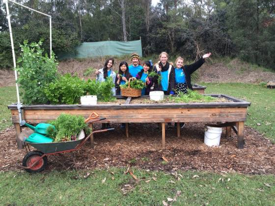 Community-Garden_Harvest-Day_PeopleandFood