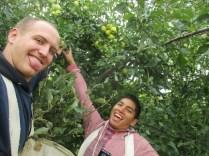 2016-10-11-yakima-missionaries-serve-53