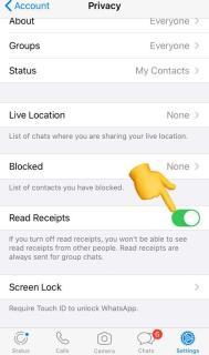 WhatsApp read receipt tricks.