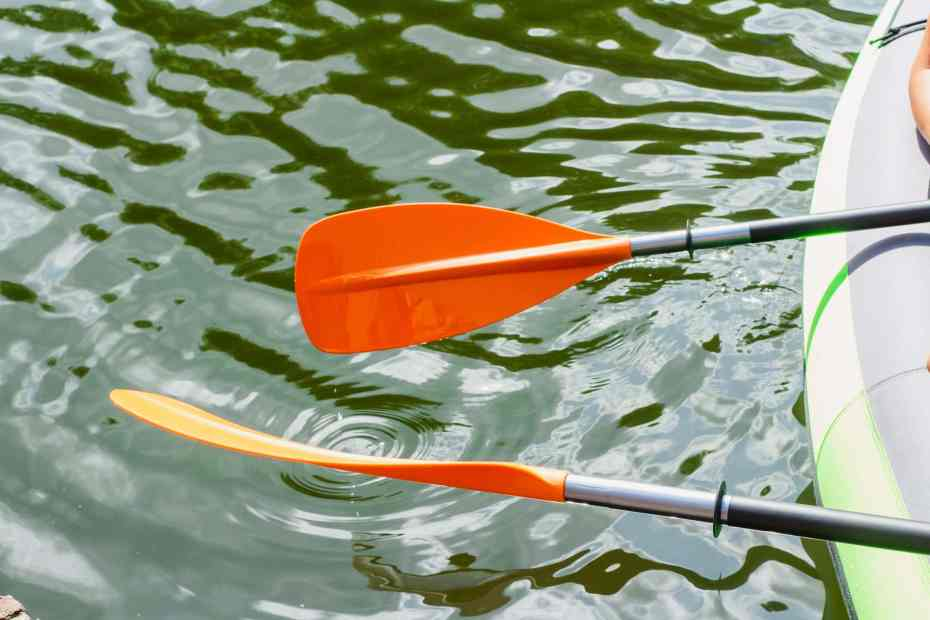 Paddle in Water