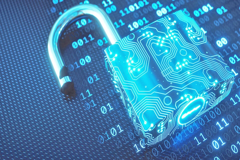 What is Website Security?