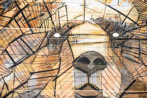 brown and black animal shape artwork painting