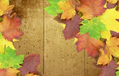 autumn-432298_1280