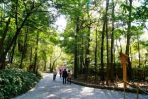 伊勢神宮の初詣に行くなら、混雑する時間帯を調べてから行くようにして下さい。