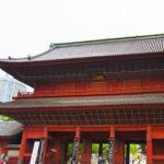 初詣に行きたい東京の穴場神社。混雑なしでお参りしよう