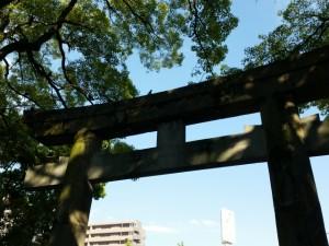 753_hatsuhoryo_003