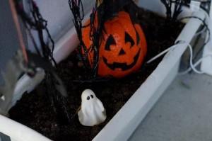 halloween_jack-o-lantem_002