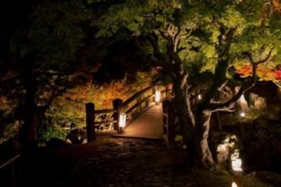autumn_eikando_2015_004