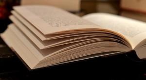 読書の秋の由来と意味はあるのか?秋の夜長の過ごし方とは?