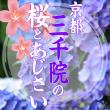 sanzenin_eyecatch