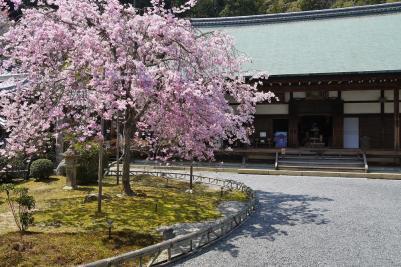sightseeingtourism_arashiyama_004