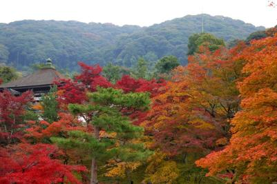 sightseeingtourism_koudaiji_001