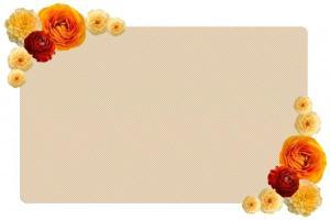 telegram_wedding_002