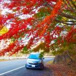 秩父長瀞の紅葉。見ごろ時期とスポットドライブ。ライトアップ2018