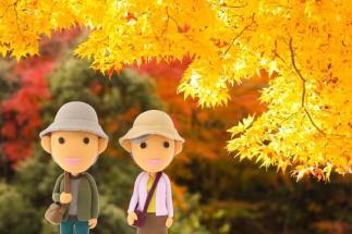 autumn_leaces_kinkakuji_2015_002