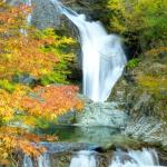 養老渓谷の紅葉2016。見ごろ時期と名所スポットおすすめコース