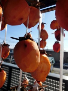 dried_persimmons_004