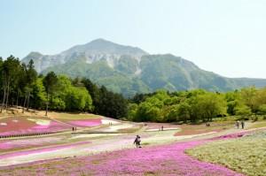 hitsujiyamapark_008