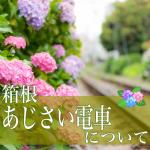 箱根あじさい電車2018。見頃と開花状況。混雑予想と撮影スポット