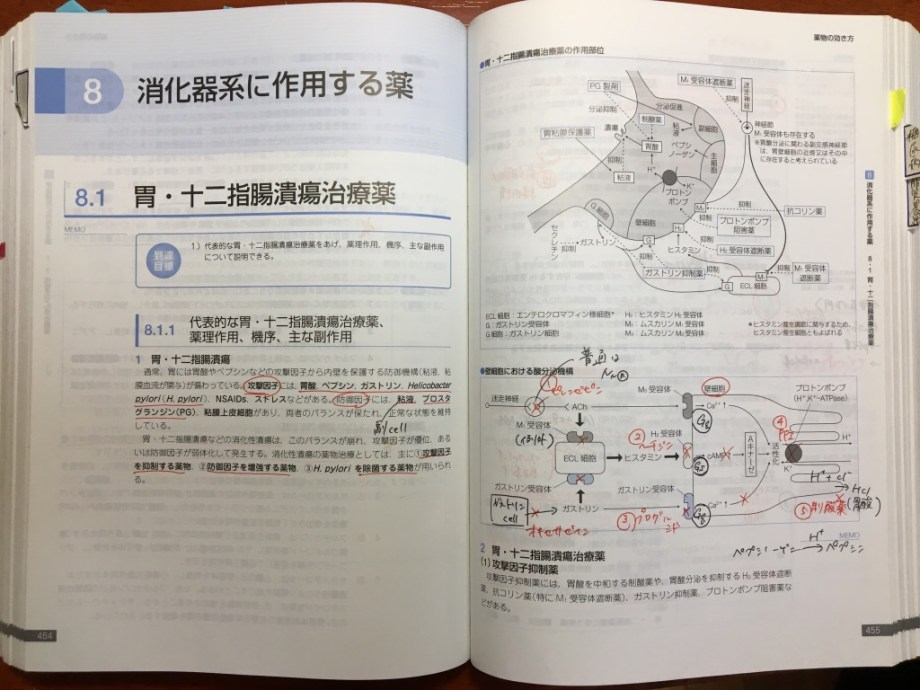 薬剤師国家試験 勉強法