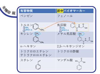特殊健康診断 バイオマーカー 有機溶媒