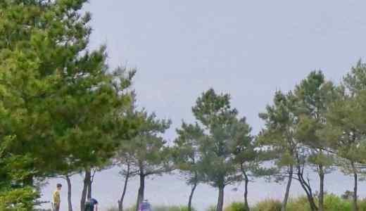 屋久島おすすめキャンプ場 『青少年旅行村』と『近くの観光スポット』のご紹介。