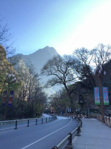 Road towards National Park Entrance